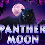 Онлайн Гейминатор Panther Moon (Лунная Пантера) играть