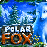 Бесплатный установка Polar Fox онлайн. Играть сверх регистрации