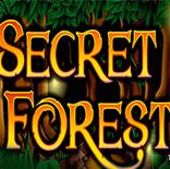 Онлайн Гейминатор Secret Forest (Волшебный Лес) бесплатно